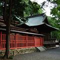 Photos: [AIR]神社_1