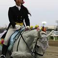 写真: 川崎競馬の誘導馬05月開催 誕生日記念レースVer-20-large