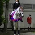 写真: 川崎競馬の誘導馬05月開催 藤Ver-120514-08-large