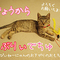 Photos: らぶりぃでちゅ♪