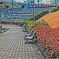 相模原公園(HDR)
