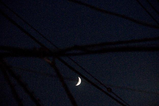 Caught Moon