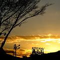 Photos: 黄金の太陽