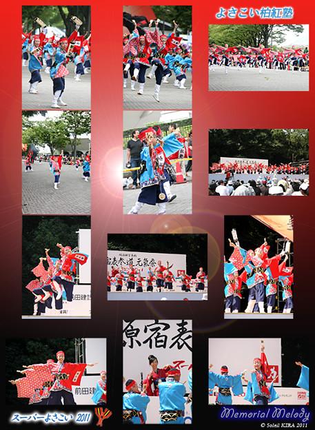 写真: よさこい柏紅塾_03 - 原宿表参道元氣祭 スーパーよさこい 2011