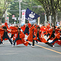 写真: 朝霞なるこ遊和会_彩夏祭2008_26