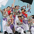 踊るBAKA!TOKYO_川崎大師厄除けよさこい_08