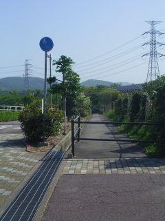 桃花台BS付近にある不可解な歩道