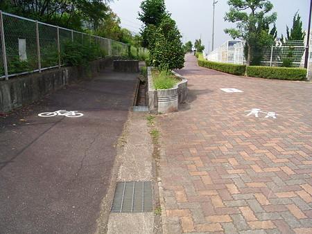 桃花台第四公園入り口付近の歩道