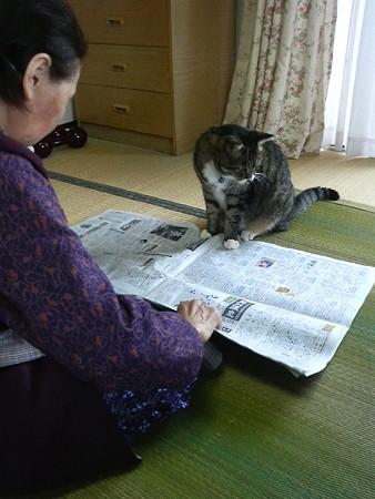 おおばあちゃんといっしょ02