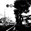 Photos: 道路 ポスタリゼーション(白黒)