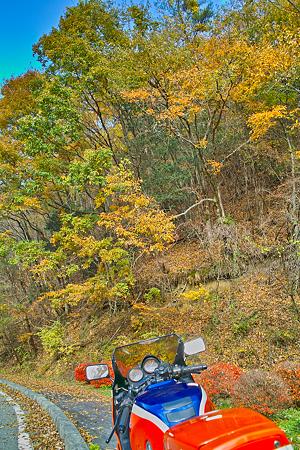 泰阜の秋とvf(SDIM0427)
