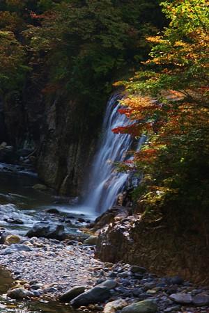 白山スーパー林道 姥が滝(日本の滝百選)
