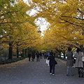 Photos: 2008_11150250