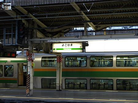 231系東海道線(横浜駅)