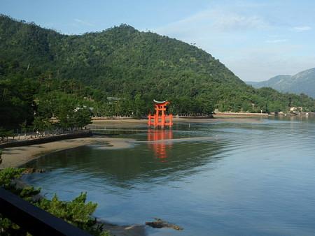 錦水館からの景色(厳島神社の鳥居)