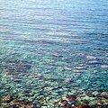 写真: 春の海 ひねもすのたりのたりかな (与謝蕪村)