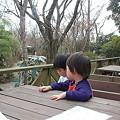 Photos: 有野実苑31