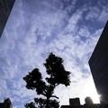 2012-07-02の空