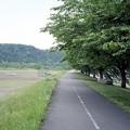 写真: 201205-04-011PZ