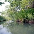 写真: 201205-05-009PZ