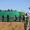 Photos: 20110213_102740