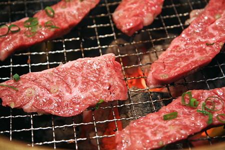 肉のパターン