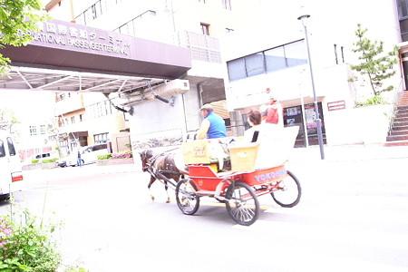 白昼の駿車
