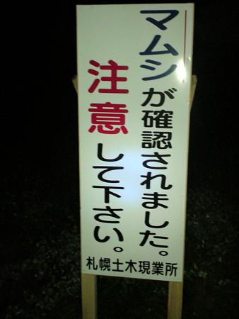 08-09-18夜練 マムシ注意