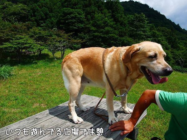 s-2008_0727myu0022