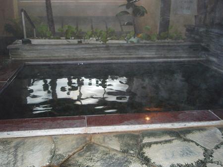 菱野温泉薬師館2