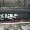 写真: 菱野温泉薬師館2
