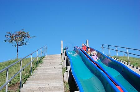 Robbins Farm Parkの滑り台