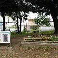 写真: 発掘旧墓_01 木蓋土壙墓