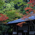Photos: 高山寺 開山堂の紅葉_02