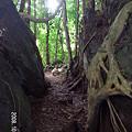 Photos: レインボー滝3