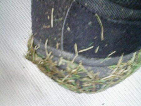 080830-靴の芝