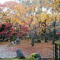写真: 太宰府光明禅寺の紅葉