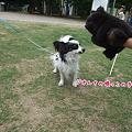 Photos: 何をやってるんだか・・・(=^w^)ぷぷっ!