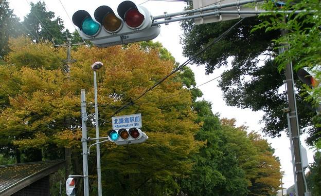 Photos: 北鎌倉駅前