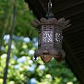 Photos: 紫陽花と燈篭0601te