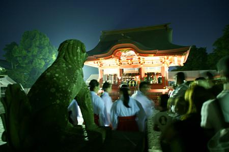 蛍放生の祭典鎌倉0607
