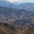 Photos: 110131-116山頂からの富士山