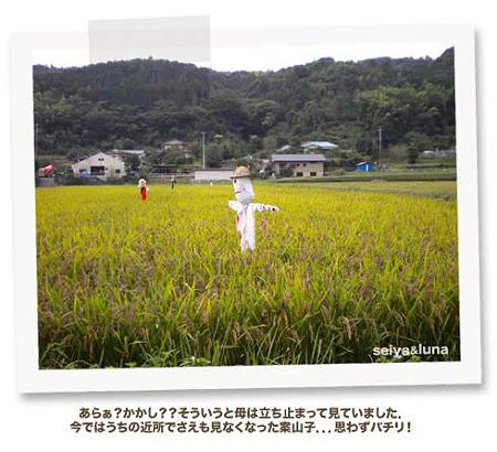 kizuna03