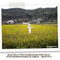 写真: kizuna03