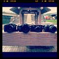 写真: 集合写真