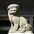 写真: カッパ狛犬