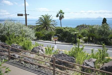 桜島のバス停