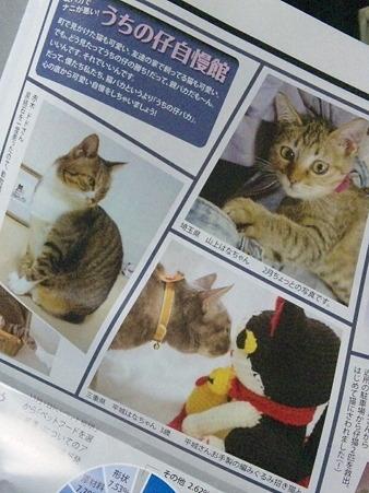 猫とも新聞第6号に鼻キッス...