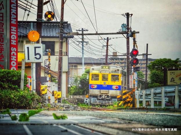きくち電車は北へ。