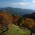 Photos: 平木峠より
